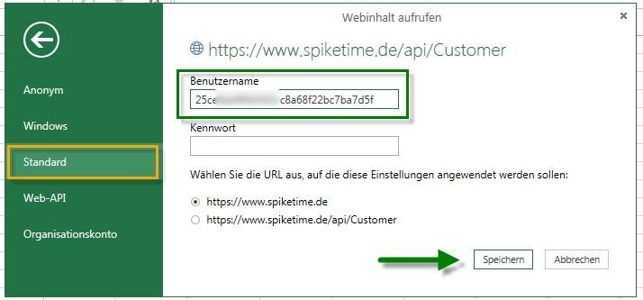 API Key eingeben